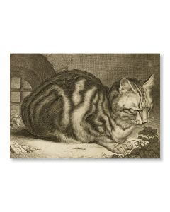 The Large Cat Greeting Card