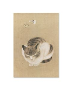 Sleeping Cat Mini Notecard Box