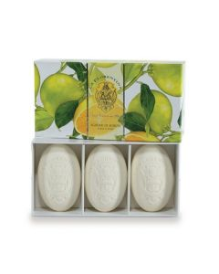 Boboli Citrus Soap Box