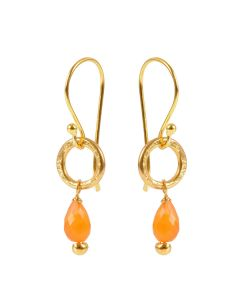 Gita Carnelian Earrings
