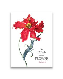 The Book of The Flower