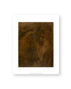 Raphael The Head Of A Horse Print