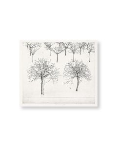 Ashmolean Sproule Trees in Snow Christmas Cards