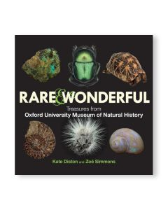 Rare & Wonderful Treasures