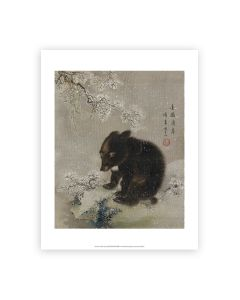 Black Bear Cub In Snow Print